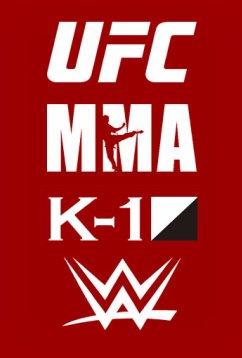 BOX / MMA / UFC / K-1 (2017)