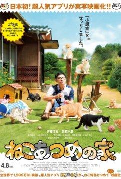 Дом кошек (2017)