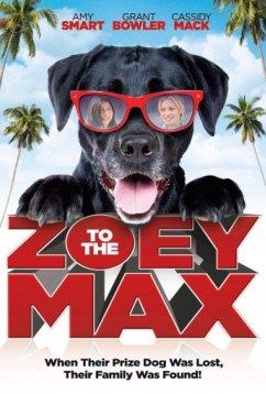 Зои и Макс (2015)