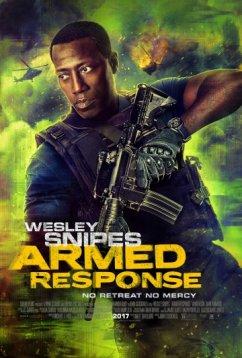 Вооружённый ответ (2017)