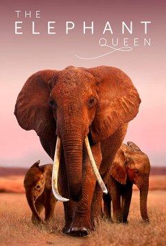 Королева слонов (2019)
