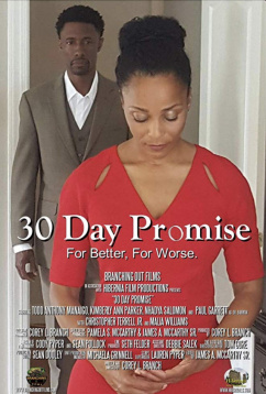 30-дневное обещание (2017)