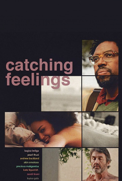 В погоне за чувствами (2017)
