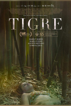 Тигр (2017)