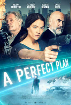 Идеальный план (2020)
