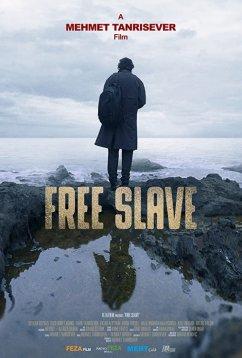 Свободный раб (2019)