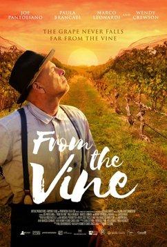 Лоза винограда (2019)
