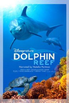 Дельфиний риф (2018)