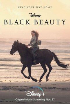 Чёрный Красавец (2020)