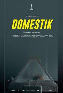 Домашний режим (2018)