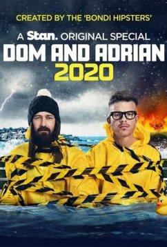 Дом и Эдриан: 2020 (2020)